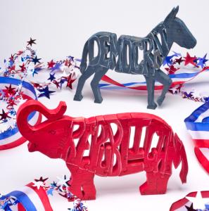 Political Party Puzzles