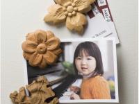 Handcarved Magnets Pattern