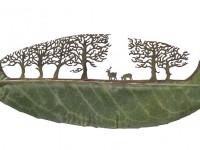 WcI72 Bonus Photos – The Art of Leaf Carving