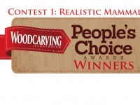 And the Votes are in for the First WCI People's Choice Contest.