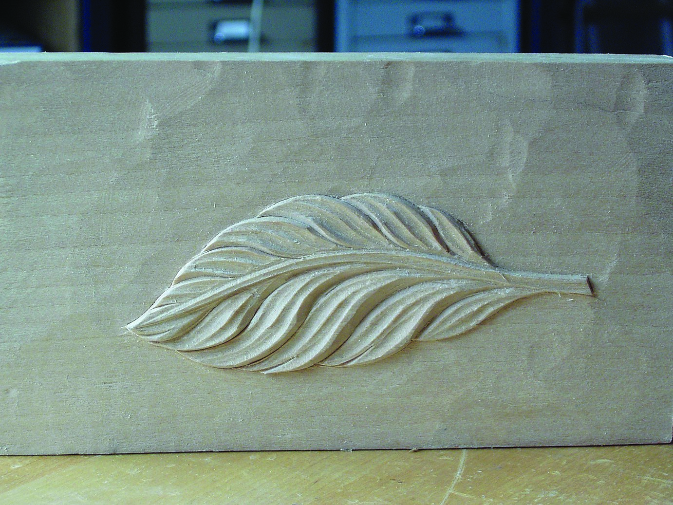 Setting up shop woodcarving illustrated