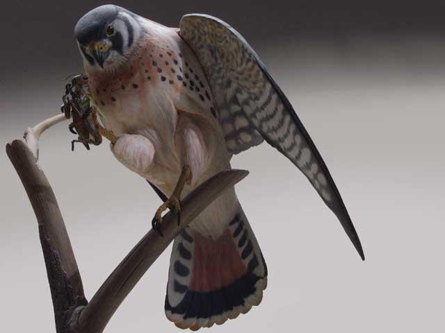Burning Basics For Bird Carvers